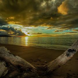 by Ferry Zan - Nature Up Close Sand