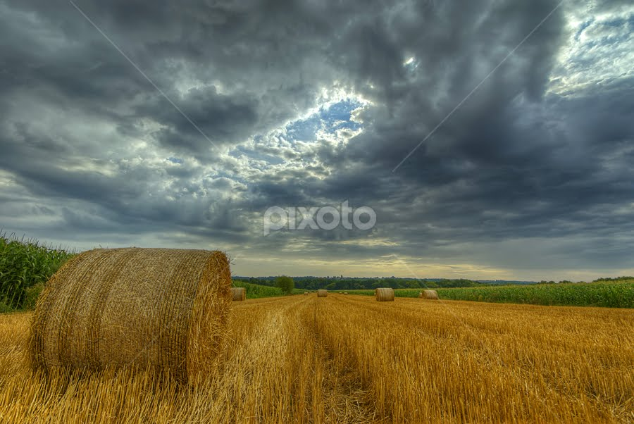by Boris Frković - Landscapes Prairies, Meadows & Fields