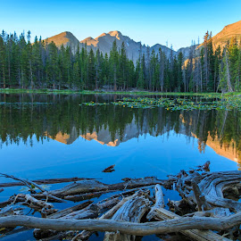 Morning Reflections by Kathy Suttles - Landscapes Waterscapes