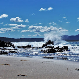 Mallacoota by Sarah Harding - Novices Only Landscapes ( novices only, summer, sea, beach )