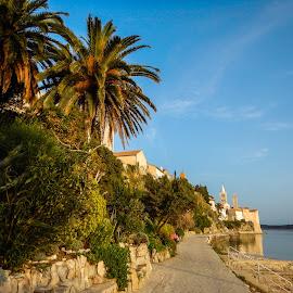 Rab - Croatia by Milan Tomicic - City,  Street & Park  City Parks ( promenade, parks, trees, coast, city )
