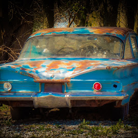 Old Chevy Bel Aire by Karen Martin - Transportation Automobiles ( car, old, vintage, rusty, chevy, rustic, bel aire, bel air, belaire, turquoise, blue, chevrolet, rusted, rust, decaying, abandoned )