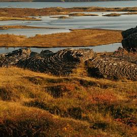 by Karl Jones - Landscapes Prairies, Meadows & Fields