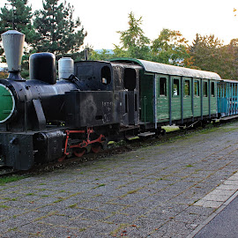Old train - Samoborcek - Samobor,Croatia  by Jerko Čačić - Transportation Trains (  )