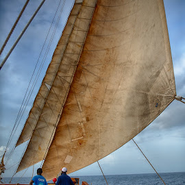 Captain Sly at the Helm by Tom Reiman - Transportation Boats ( windjammer, sailing, tall ship, sv mandalay, sail boat, caribbean, captain sly )