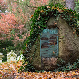 Mount Auburn Cemetery Cambridge MA by Paul Gibson - Artistic Objects Other Objects ( religion, boston, cemetery, moss, graveyard )