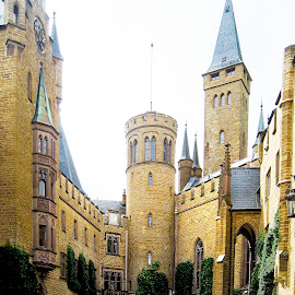 Castle in Germany by Steph McGuire - Buildings & Architecture Public & Historical ( old, spires, germany, castle, courtyard )
