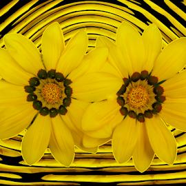by Kris Pate - Digital Art Things