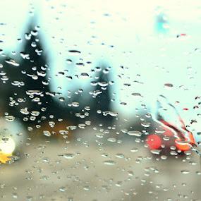 Rainy Day by Aleksandar Šeter - City,  Street & Park  Street Scenes ( cars, street, rain )