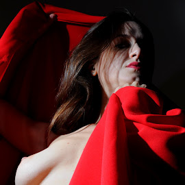 Sophie in the Shadows by DJ Cockburn - Nudes & Boudoir Artistic Nude ( sophie french, red, dark hair, sitting, topless, nude, home shoot, off-camera flash, woman, brunette )