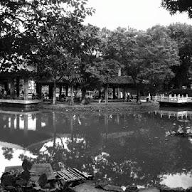 Rizal Park by Ja Villanueva - Nature Up Close Gardens & Produce