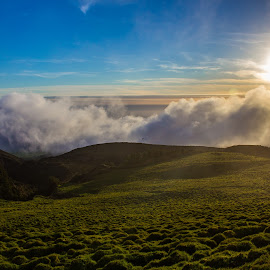 Above the clouds... by Alvaro Miranda - Landscapes Mountains & Hills ( clouds, hills, natural light, skyline, mountain, grass, colors, cloudscape, highlands, landscape, sunlight, azores, highland, sky, nature, sunset, cloudy, high, natural )