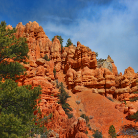 Bryce Canyon by Dipali S - Landscapes Caves & Formations ( cliffs, stone, rock, vibrant, geology, spiritual, iconic, nature, bryce, orange, national, canyon, windows, tourism, stacks, paria, pinnacles, roadway, landmark, environment, cathedral, western, tunnel, america, highway, erosion, colorful, vivid, sandstone, road, old west, usa, towers, formations, southwest, ecology, chimney, desert, park, scenic, amazing, southwestern, red, color, utah, spires, vista, arches, summer, hoodoos )