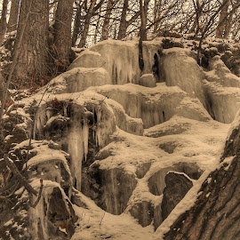 Frozen Waterfall by Patricia Phillips - Nature Up Close Other Natural Objects ( ice frozen-falls winter alaska )