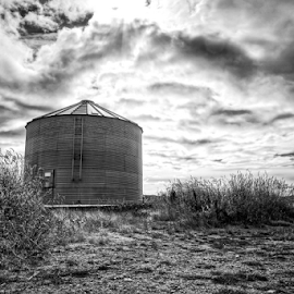 Standing out  by Todd Reynolds - Black & White Buildings & Architecture