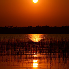 Beautiful Sunset, Minnesota Lake Country by Kathleen Koehlmoos - Landscapes Sunsets & Sunrises ( wolf lake, minnesota, sunset on the lake, minnesota lake country, lake sunset, lakes,  )