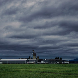 Skagit Co-op  by Todd Reynolds - Landscapes Weather