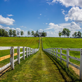 Farm Beauty by Bo Stamper - Landscapes Prairies, Meadows & Fields ( wide angle, outdoor, horse, landscape )