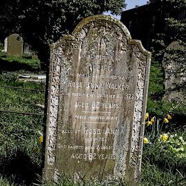SUF gravestone 18 by Michael Moore - City,  Street & Park  Cemeteries