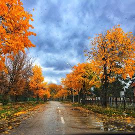 Pogradec, 🇦🇱 Albania, november 2017 by Estela Topuzi - Novices Only Landscapes