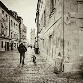 Old Town, Prague by Irena Brozova - City,  Street & Park  Street Scenes
