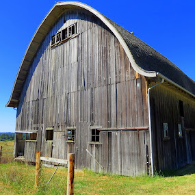 Historic Barn by Bill Foreman - Buildings & Architecture Public & Historical ( washington, barn, whidbey, historic, island )