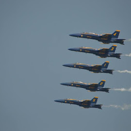 Blue Angels by Dean Germann - Transportation Airplanes ( plane, airplane, air, jet, airshow )