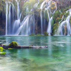 In the water by Branko Balaško - Nature Up Close Water ( water, reflection, green, waterfall, lake )