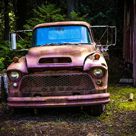 Old Red Truck by Sharon Leckbee - Transportation Automobiles ( truck )