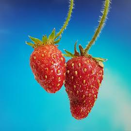 Just eat me by Landi Cordier - Food & Drink Fruits & Vegetables ( red, sky, blue, nature, strawberries,  )