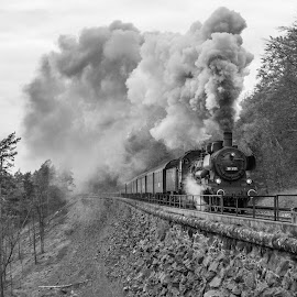 Full steam ahead by Christian Spiller - Transportation Trains ( passenger, steam engine, schiefe ebene, railroad, steam train, train, germany, incline, full steam, gradient, steam )