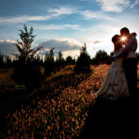 by Steven C. Bloom - Wedding Bride & Groom ( field, sunburst, bride, groom, sun )