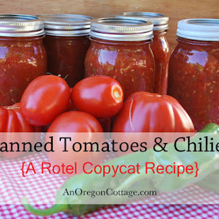 Rotel Tomatoes Canned Recipes