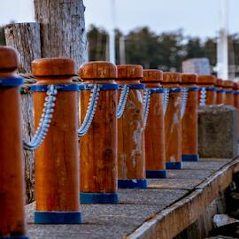 Railing by Darren Sutherland - City,  Street & Park  City Parks ( railing, sidney, canada, ocean, marina )