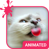 Cat Love Animated Keyboard APK for Lenovo