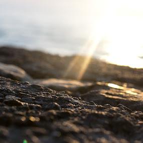 Ray by Libin Michael - Landscapes Sunsets & Sunrises ( macro, sunset, sea, light, sun )