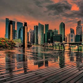 by Gordon Koh - City,  Street & Park  Skylines (  )