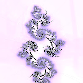 Floral 5 by Cassy 67 - Illustration Abstract & Patterns ( abstract art, digital art, harmony, bloom, white background, flowers, fractal, digital, fractals, flower )