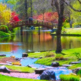 by Mark Wathen - Landscapes Waterscapes ( water, ponds, romantic, flowers, bridges )