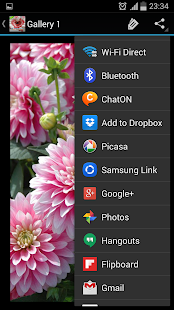 Flowers - screenshot