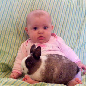 My First Bunny by Kaylana Fief - Babies & Children Babies ( love, peaceful, bunny, baby, cute )