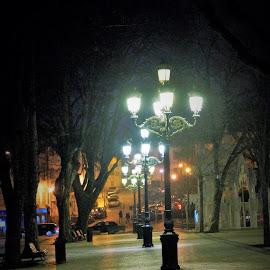 Night light by Nelson Batalha - City,  Street & Park  Night ( streetlight, night lights, night scene, street, street scene, nightshoot, city, street photography, nightscape, night photography, lamp, city lights, citystreet, lamp post, nightlife )