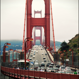 Golden Gate Bridge by Anukrati Omar - Buildings & Architecture Bridges & Suspended Structures ( traffic, bridge, golden gate, san francisco, city )