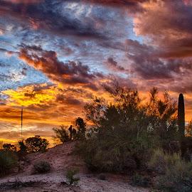 Tucson Sunrise by Charlie Alolkoy - Landscapes Sunsets & Sunrises ( clouds, sky, desert, sunset, arizona, tucson, sunrise )
