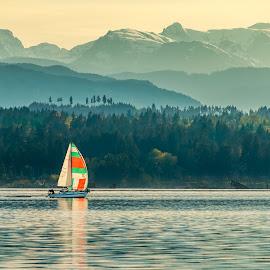 looking ahead by Barb Postal - Transportation Boats ( glacier, mountains, sailing, ocean, sail, sailboat )