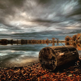Fall evening by D.j. Nichols - Instagram & Mobile Android ( fall, evening )