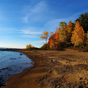 by Flora Ehrlich - Novices Only Landscapes ( coastal landscape, copy space, seasonal, america, ocean, pebbles, blue water, beach, landscape, leaves, usa, lake shore, pure michigan, coast, foilage, autumn, rocks, port sanilac, water, fall background, sand, peaceful, park, lake huron, midwest, sea, forest, lake, scenic, quiet, great lakes, michigan, new, bay, serene, outdoors, background, fall, cove, trees, walk, hike )