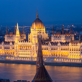 Parliament by Tracey Dolan - Buildings & Architecture Other Exteriors