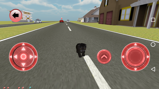 Game Real Cat Simulator APK for Windows Phone