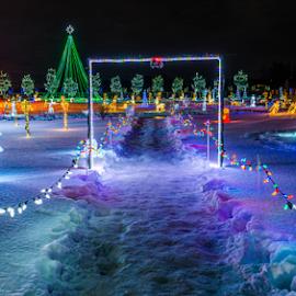 Christmas Night by Joseph Law - Public Holidays Christmas